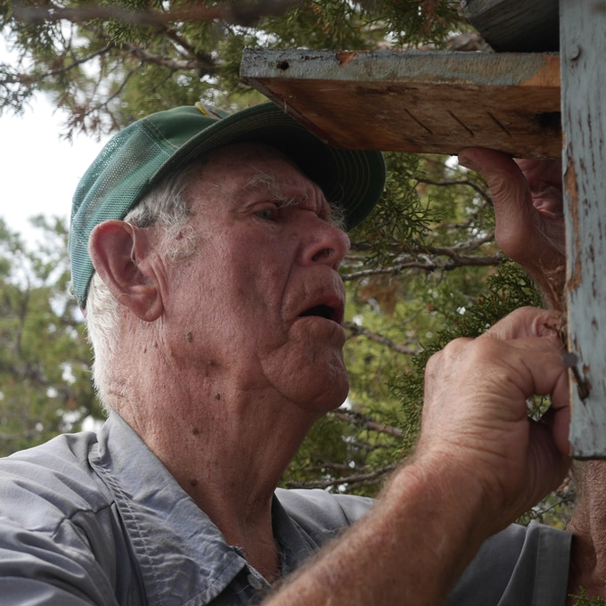 Mr. Larson carefully inspecting a bluebird nest box.