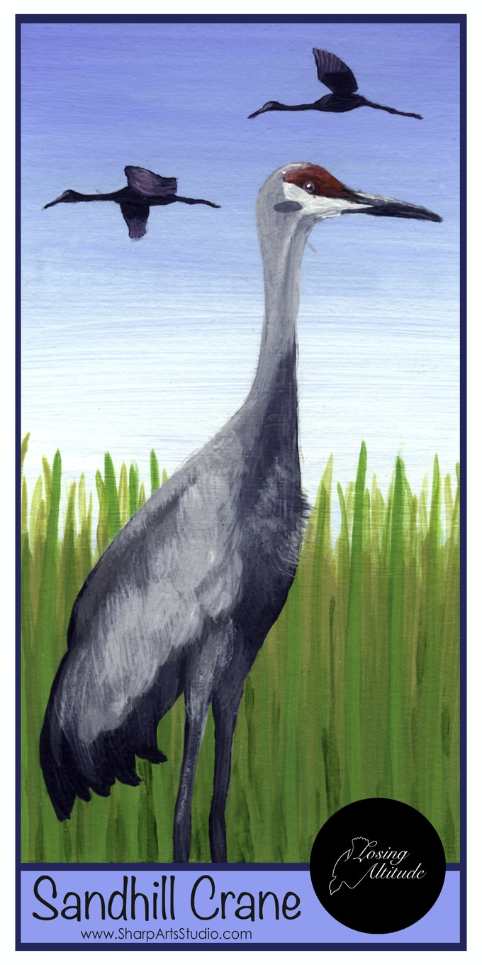 Sandhill Crane bookmark by Mike Sharp