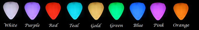 Choose from any of these light color options.