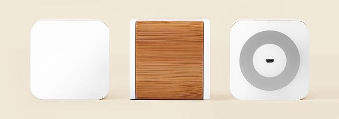 Bamboo Edition Circle