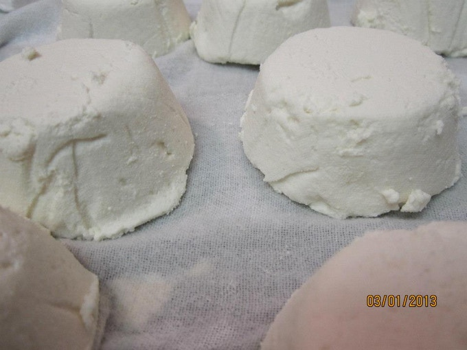 fresh Chevre (coconut milk based)