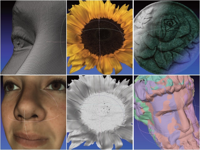 3D scan images taken with our Fuel3D functional prototype