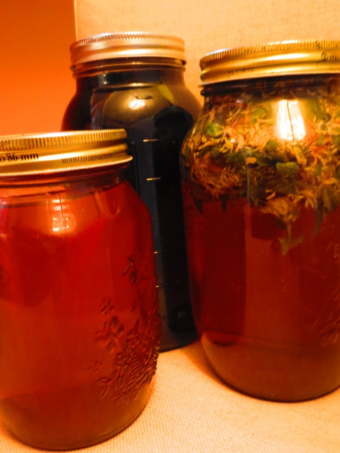Rosehip, Nettle Leaf Infusion and Red Clover Blossom Infused Beverages