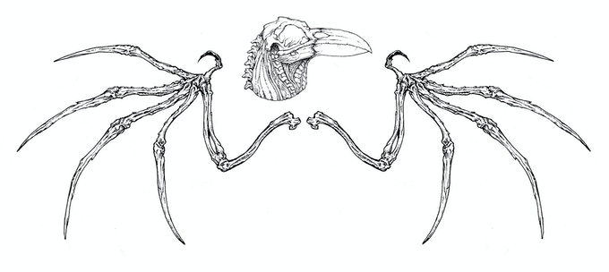 Bone Wings & Skull!! (UNLOCKED)!!