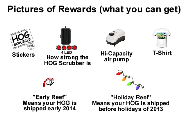 What rewards you can get