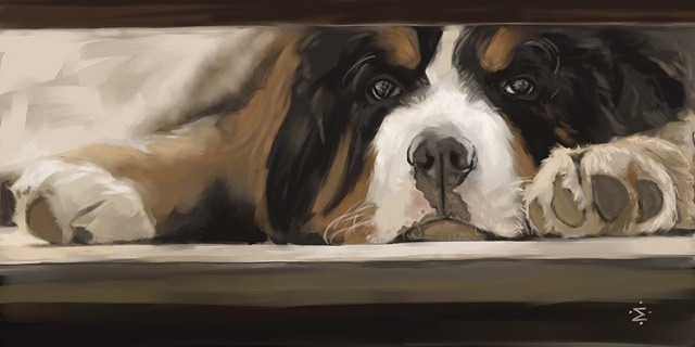 """This digital portrait of """"Beorn Waiting"""" is availabe as a part of a $79 or $199 pledge; or for a higher plege level receive a custom portrait of your pet!"""