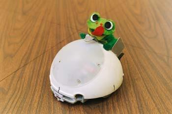 REG Robot: The PEAR Mascot