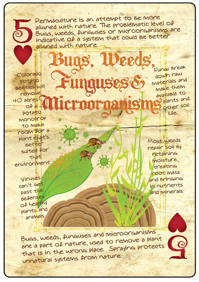 Bugs, Weeds, Funguses and Microorganisms