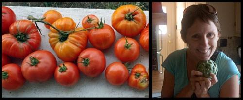 Marika harvesting