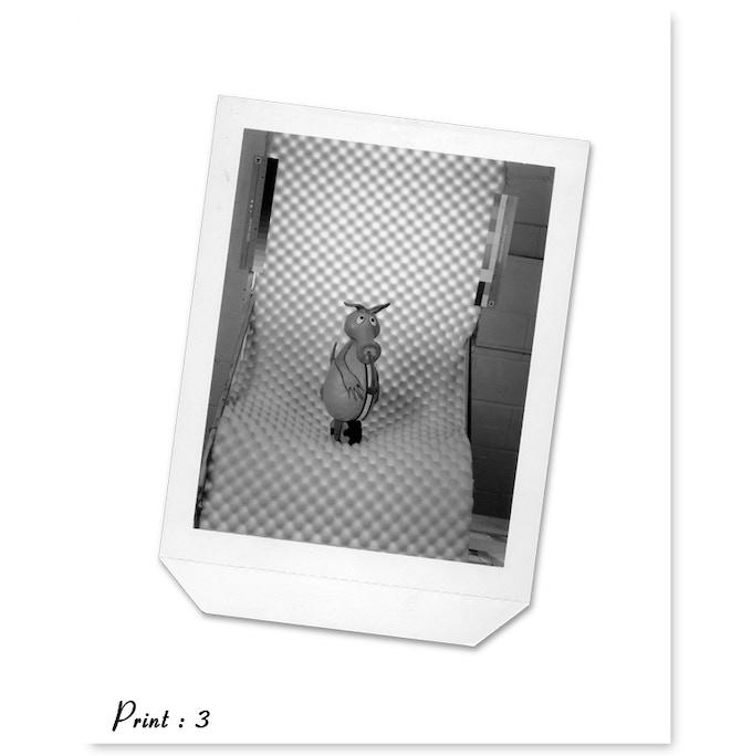 Print 3 : Polaroid of 1993 Aardvark Deck Setup - artist Mike Hill