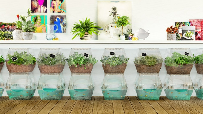 The Aqualibrium Garden - Fits Anywhere