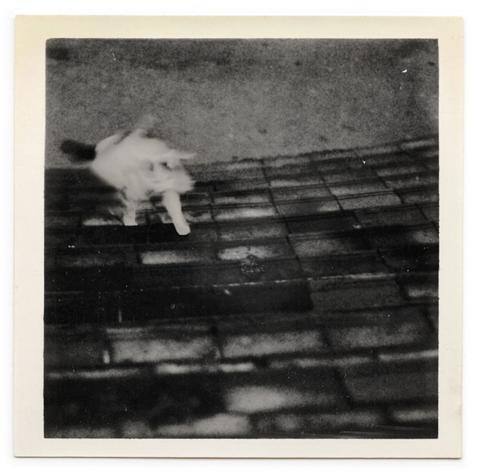 Where can I buy...?