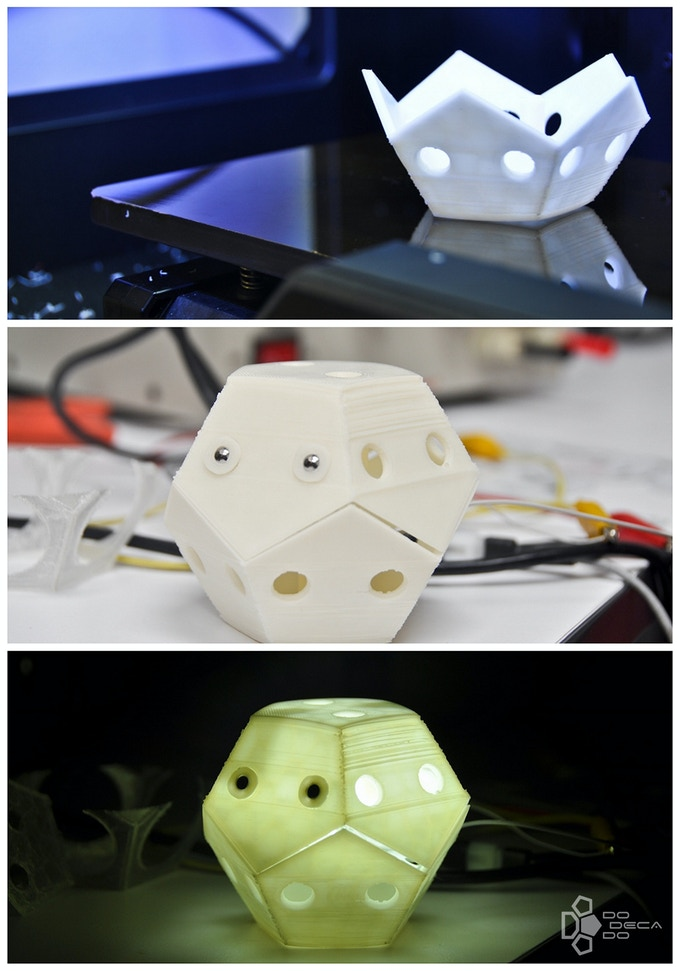 First 3D print & the very first time we lit it up!