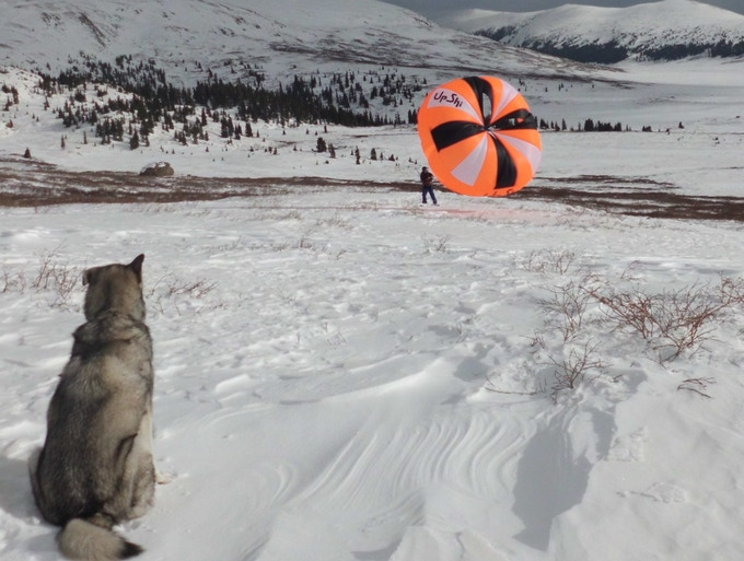 UpSkiing with dogs near Mt Bierstadt in Colorado