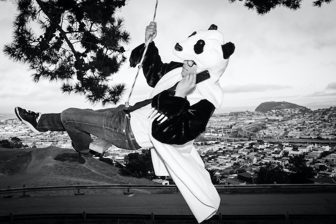 Yes. Pandas do deals too. They have agents and stuff.