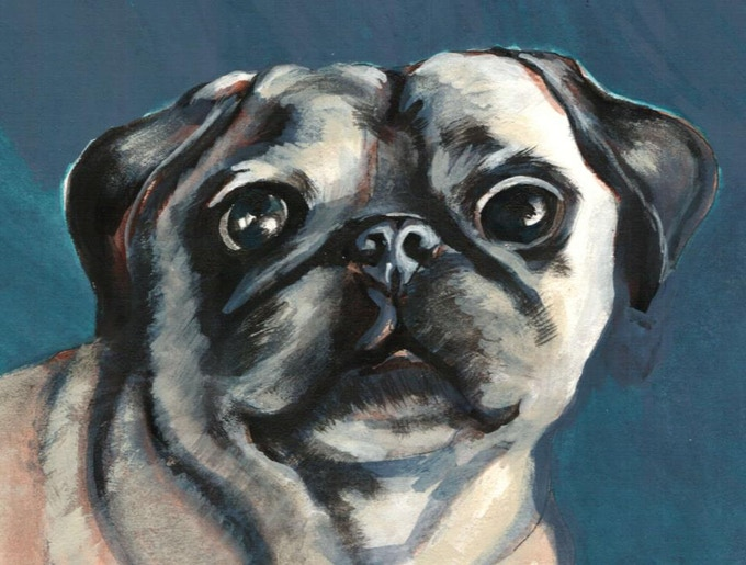 $150 reward! your pet portrait in color, matted or painted on ornament.