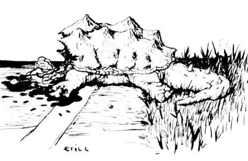 Drawing America by Bike Part 2: ReGear & Ride East by Eric