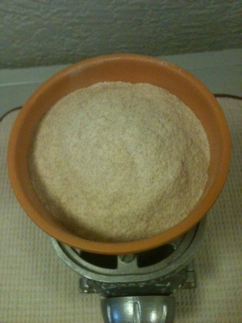 Whole Grain, Sprouted Wheat Flour