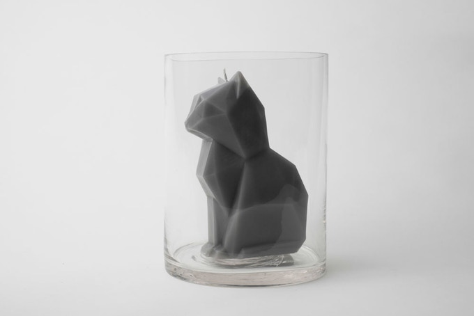 Grey Kisa in a glass jar