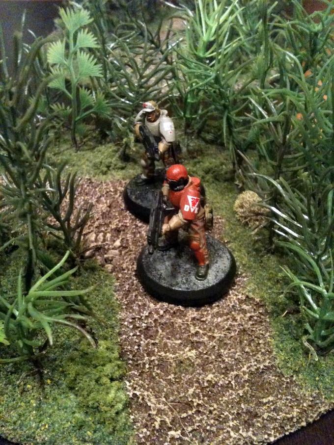 Dense Jungle Pathways