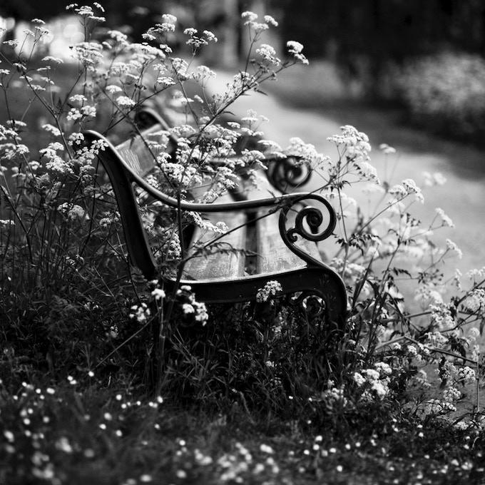 Andrew Crighton 'Summertime' photograph