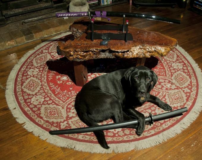 Katana Dog on Alert
