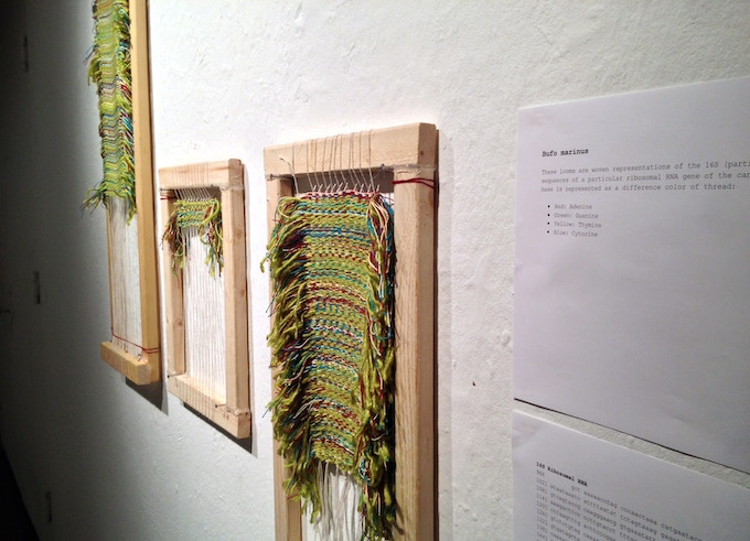 The first weavings in a gallery space.