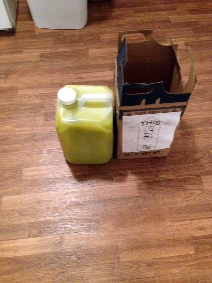 The EVOO sample turned out to be larger than expected. Now you know what 35 pounds of olive oil looks like.