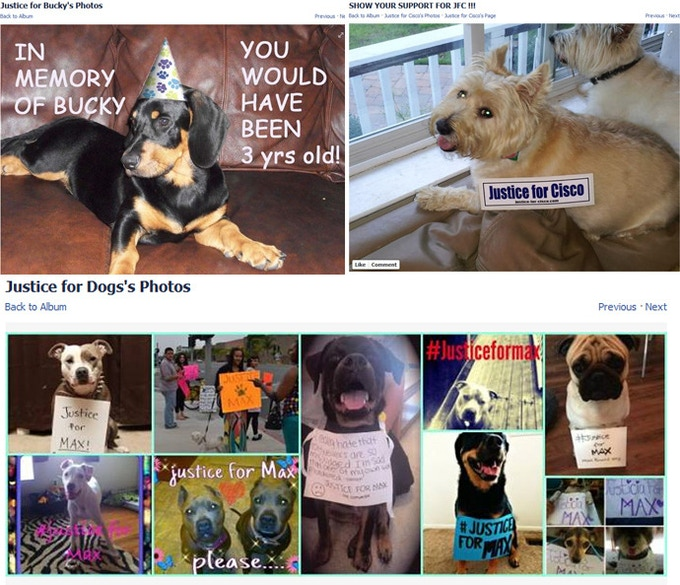 On Facebook, one can find pages with hundreds of thousands of supporters devoted to justice for victims of puppycides.