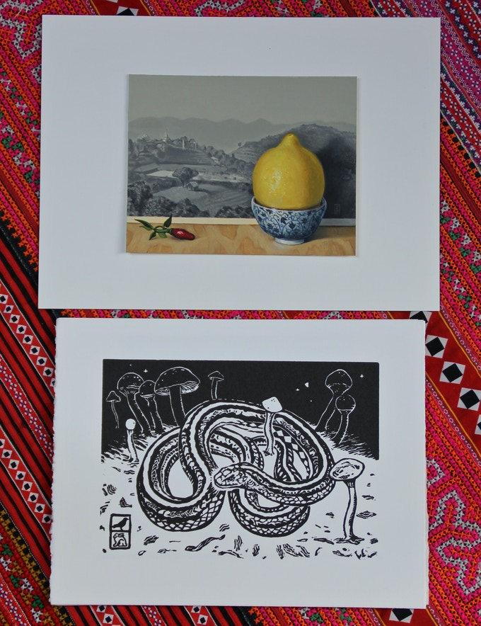 For a pledge of $1000, you will receive a custom oil painting (similar to my current still life oil series of objects from the Thai-Burma border) as well as the complete flora fauna print series.