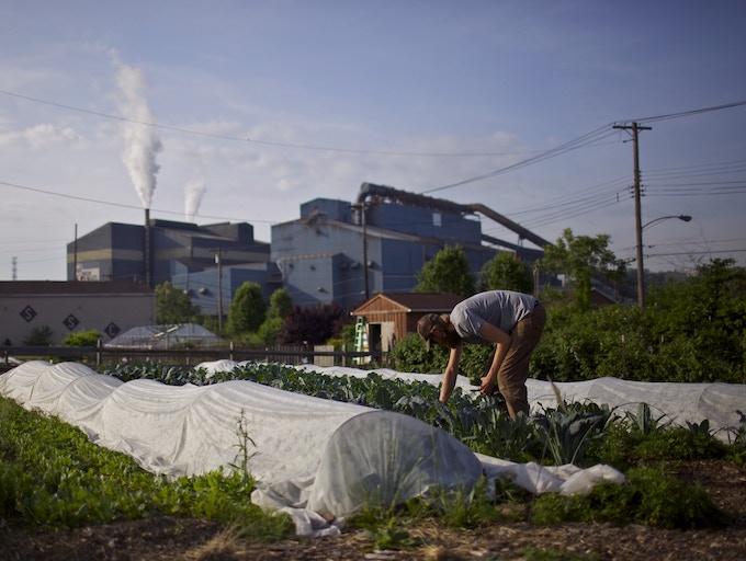 Farmer Marshall Hart working at Braddock Farms