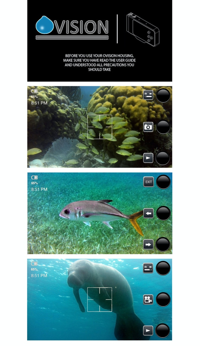 All these pictures were taken while snorkeling in Belize with an iPhone 4 and the Ovision housing.