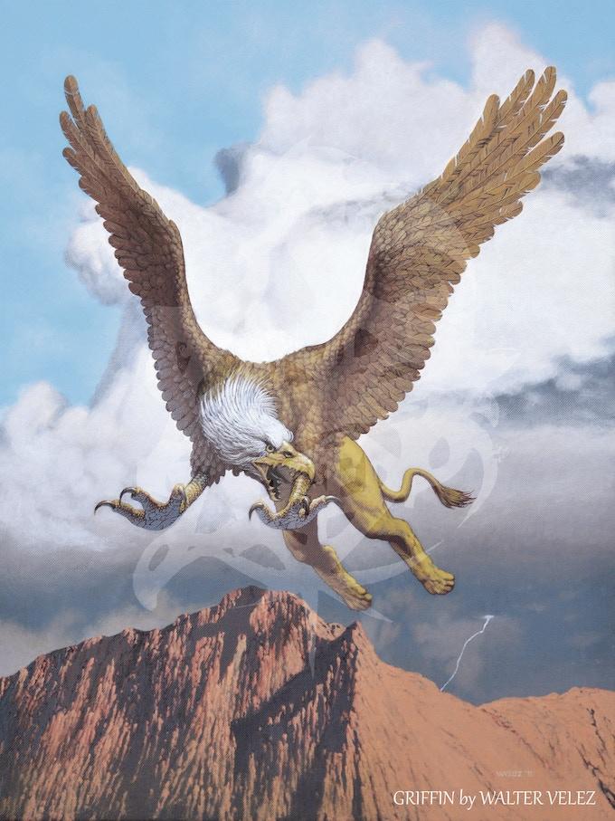 The Griffin by Walter Velez