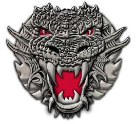 Dragon Fire! Challenge Coin by Eric Christensen — Kickstarter