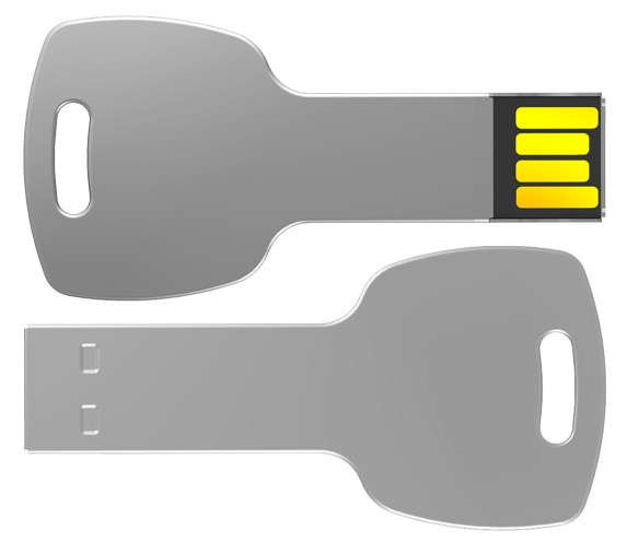 Limited Edition Stainless Steel 1Gb Key