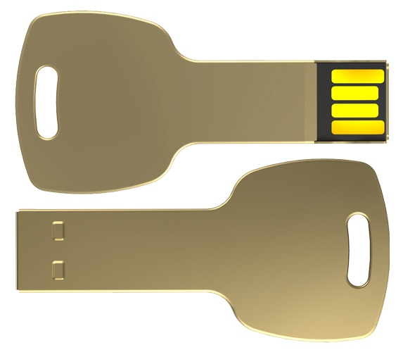 Limited Edition Gold Stainless Steel 1Gb Key