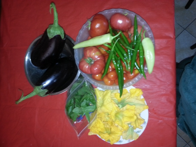 Nothing but fresh vegetables in our products. These were picked from our garden over 2013.