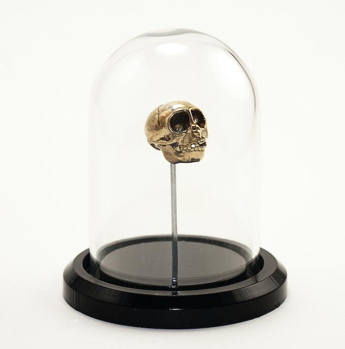 Spider Monkey in Bronze with Bell Jar Display