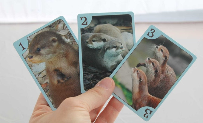Physical copies of the 1, 2 and 3 otter cards