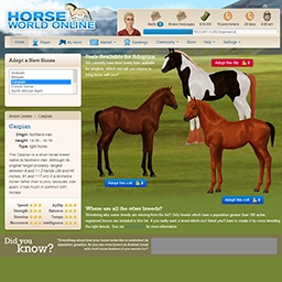 Horse World Online - A horse breeding game by Larissa ...