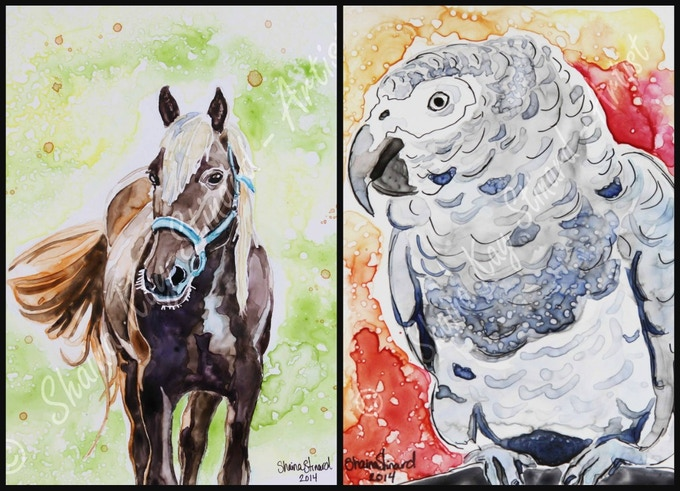 'Whiskey' - 9 x 12 watercolor on YUPO.   'Cisco' - 5 x 7 mixed media sketch on YUPO  (watercolor with pen and ink)