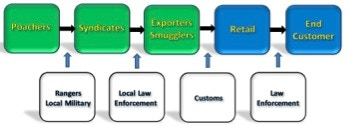 Pathway of Illicit Wildlife Trade: interceptions are possible at each interface.