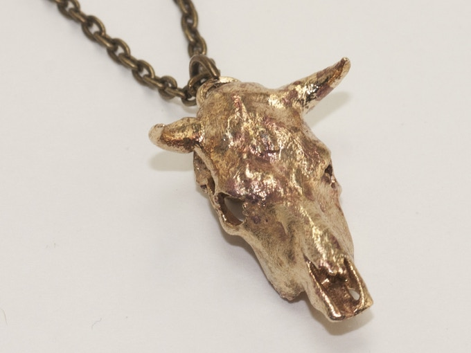 For the cowboys among us:  A bull with horns