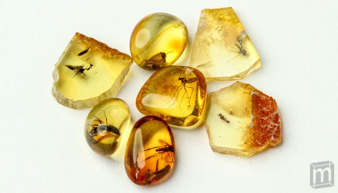 """Amber is a liquid produced by the rays of the sun."" ~ Nicias, Ancient Greece"