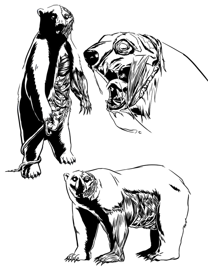 Polar Bear Zombie 1 By Jason Mansfield Deleted Kickstarter
