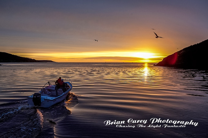 Heading Out This Morning at Petty Harbour Newfoundland