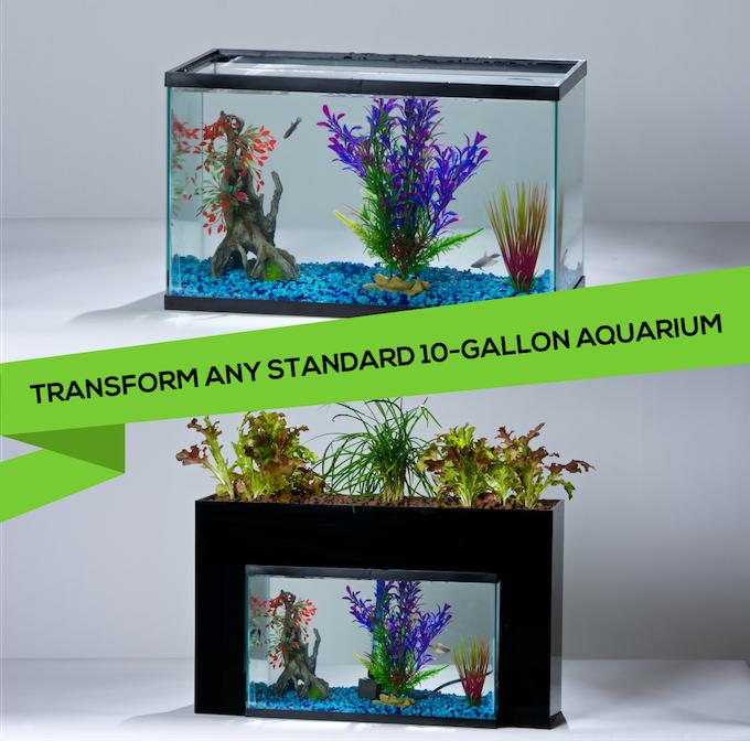 """The AquaSprouts system fits over standard 10-gallon rectangular aquariums (20""""x11""""x12"""")"""