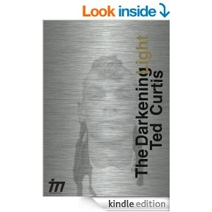 The Darkening Light by Ted Curtis. Click here to purchase on Amazon.