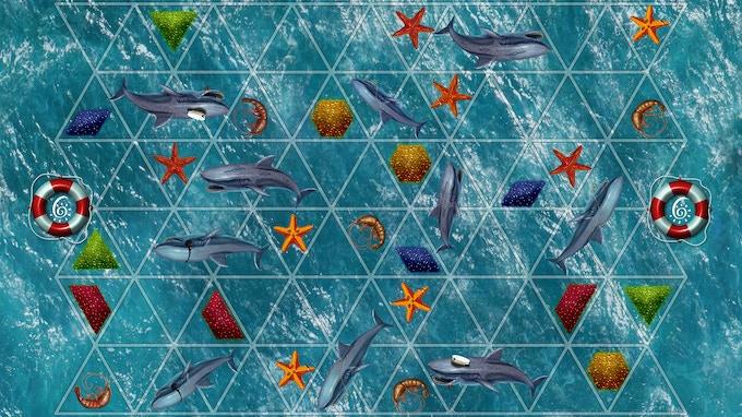 Board 6: More sharks = more danger.