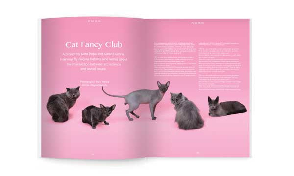 Cat Fancy project by Nina Pope and Karen Guthrie